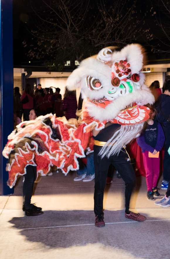 Lion Dancers at night
